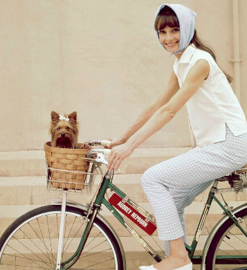 hepburn dog bike